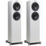 Fyne Audio F 702 gloss white